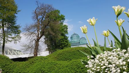 Belgium Must-See : Royal Greenhouses in Laeken